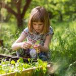 Gruppenlogo von Garten & Natur